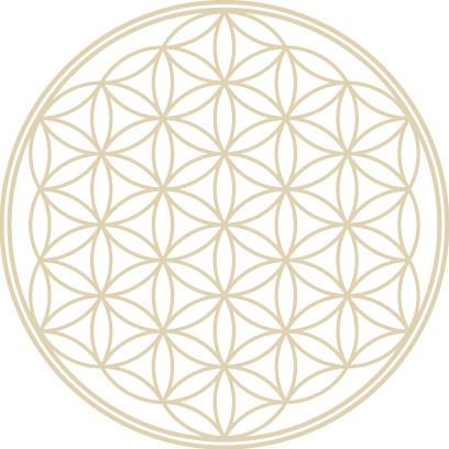 神聖幾何学フラワーオブライフの神秘すぐる宇宙と生命の謎!!